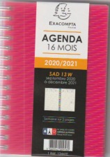 Agenda exacompta SAD 13W Linicolor 9x13 cm version 2020- 2021  format poche 13447E